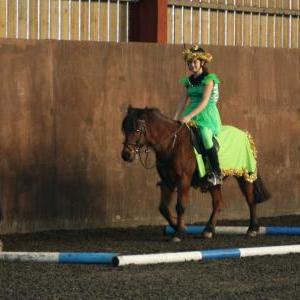 chestnuts-riding-school-christmas-gymkana-30-12-2008-pic19