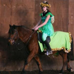 chestnuts-riding-school-christmas-gymkana-30-12-2008-pic31