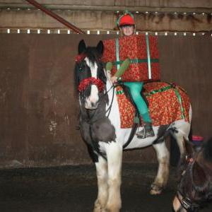 chestnuts-riding-school-christmas-gymkana-30-12-2008-pic49