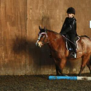 chestnuts-riding-school-christmas-gymkana-30-12-2008-pic54