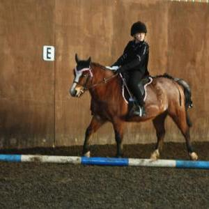 chestnuts-riding-school-christmas-gymkana-30-12-2008-pic60