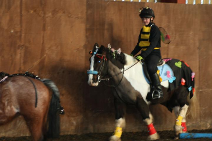 chestnuts-riding-school-christmas-gymkana-30-12-2008-pic61