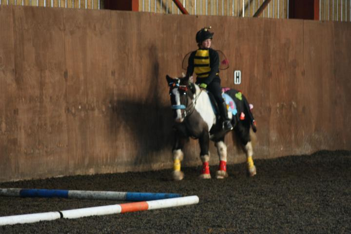 chestnuts-riding-school-christmas-gymkana-30-12-2008-pic68