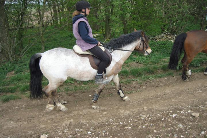 chestnuts-riding-school-large-easter-hack-15-04-2009-pic14