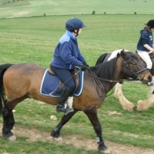 chestnuts-riding-school-large-easter-hack-15-04-2009-pic19