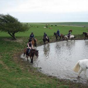 chestnuts-riding-school-large-easter-hack-15-04-2009-pic23
