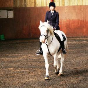 chestnuts-riding-school-sussex-brighton-dressage-2006-05-10-2008-04