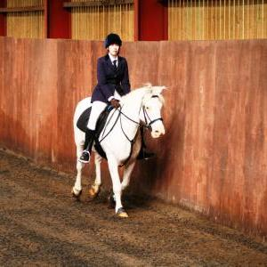 chestnuts-riding-school-sussex-brighton-dressage-2006-05-10-2008-05