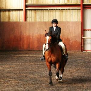 chestnuts-riding-school-sussex-brighton-dressage-2006-05-10-2008-08