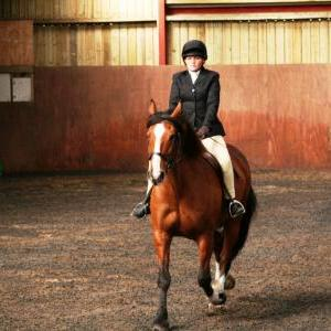 chestnuts-riding-school-sussex-brighton-dressage-2006-05-10-2008-11