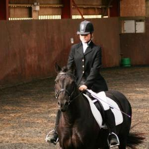 chestnuts-riding-school-sussex-brighton-dressage-2006-05-10-2008-14