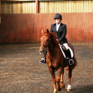 chestnuts-riding-school-sussex-brighton-dressage-2006-05-10-2008-16