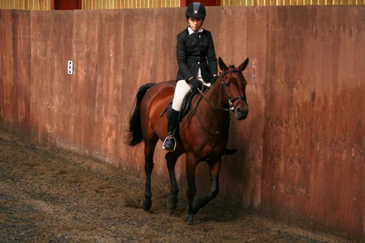 chestnuts-riding-school-sussex-brighton-dressage-2006-05-10-2008-21