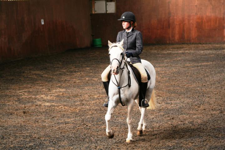 chestnuts-riding-school-sussex-brighton-dressage-2006-05-10-2008-24