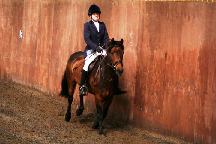 chestnuts-riding-school-sussex-brighton-dressage-2006-05-10-2008-28