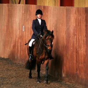 chestnuts-riding-school-sussex-brighton-dressage-2006-05-10-2008-29