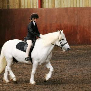 chestnuts-riding-school-sussex-brighton-dressage-2006-05-10-2008-33