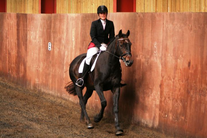 chestnuts-riding-school-sussex-brighton-dressage-2006-05-10-2008-44