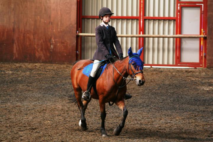 chestnuts-riding-school-sussex-brighton-dressage-2006-05-10-2008-46