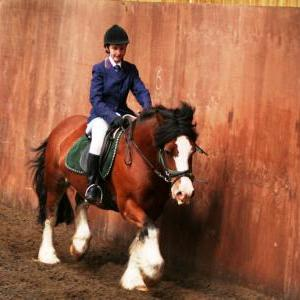 chestnuts-riding-school-sussex-brighton-dressage-2006-05-10-2008-49