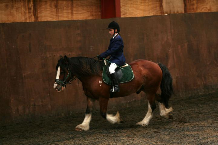 chestnuts-riding-school-sussex-brighton-dressage-2006-05-10-2008-51