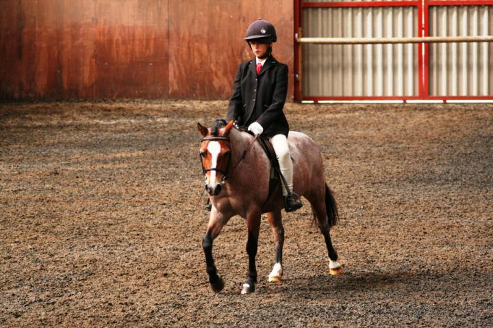 chestnuts-riding-school-sussex-brighton-dressage-2006-05-10-2008-58