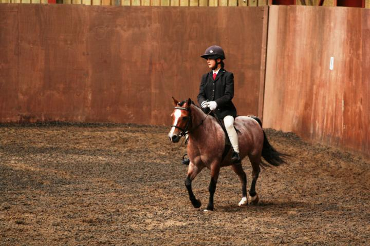 chestnuts-riding-school-sussex-brighton-dressage-2006-05-10-2008-60