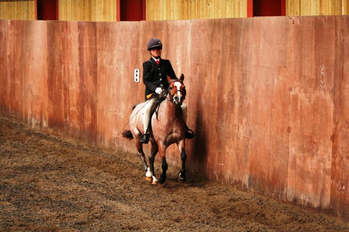 chestnuts-riding-school-sussex-brighton-dressage-2006-05-10-2008-61