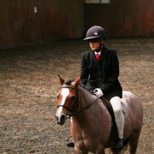 chestnuts-riding-school-sussex-brighton-dressage-2006-05-10-2008-62