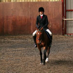 chestnuts-riding-school-sussex-brighton-dressage-2006-05-10-2008-63