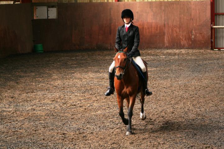 chestnuts-riding-school-sussex-brighton-dressage-2006-05-10-2008-65