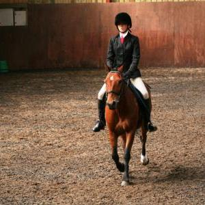 chestnuts-riding-school-sussex-brighton-dressage-2006-05-10-2008-65