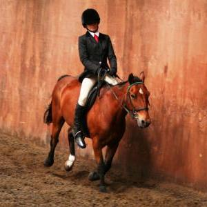 chestnuts-riding-school-sussex-brighton-dressage-2006-05-10-2008-67