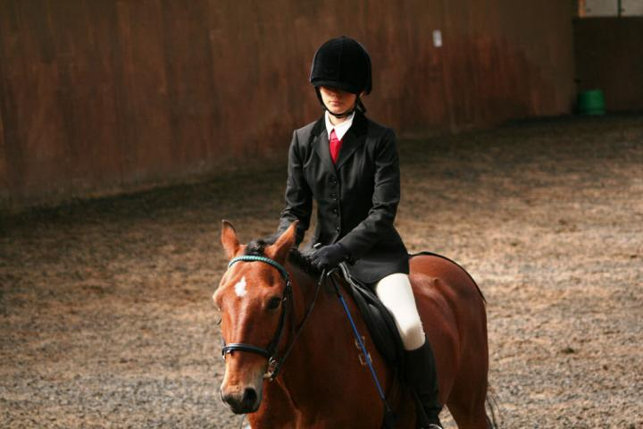 chestnuts-riding-school-sussex-brighton-dressage-2006-05-10-2008-68
