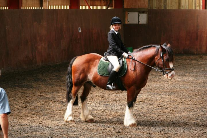 chestnuts-riding-school-sussex-brighton-dressage-2006-05-10-2008-70