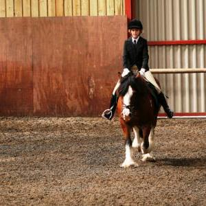 chestnuts-riding-school-sussex-brighton-dressage-2006-05-10-2008-71