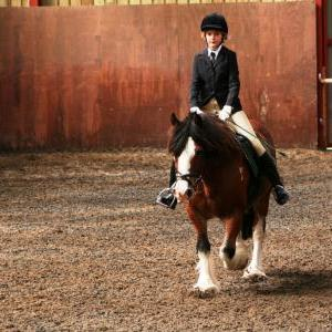 chestnuts-riding-school-sussex-brighton-dressage-2006-05-10-2008-72