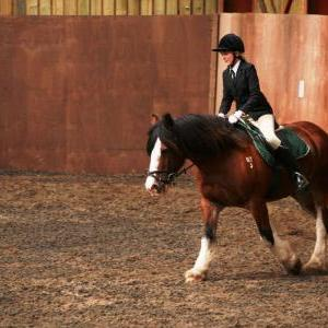 chestnuts-riding-school-sussex-brighton-dressage-2006-05-10-2008-73