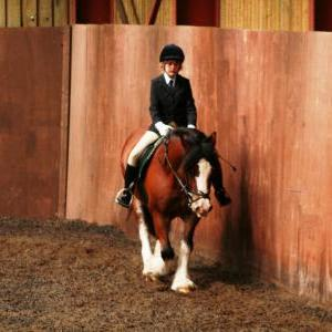 chestnuts-riding-school-sussex-brighton-dressage-2006-05-10-2008-74