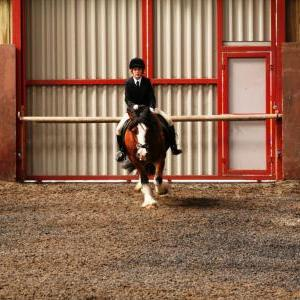 chestnuts-riding-school-sussex-brighton-dressage-2006-05-10-2008-75