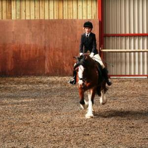 chestnuts-riding-school-sussex-brighton-dressage-2006-05-10-2008-76