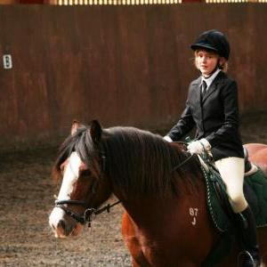 chestnuts-riding-school-sussex-brighton-dressage-2006-05-10-2008-77