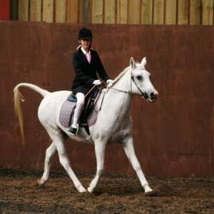 chestnuts-riding-school-sussex-brighton-dressage-2006-05-10-2008-83