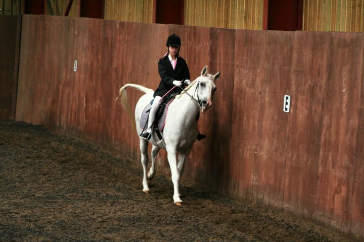 chestnuts-riding-school-sussex-brighton-dressage-2006-05-10-2008-84