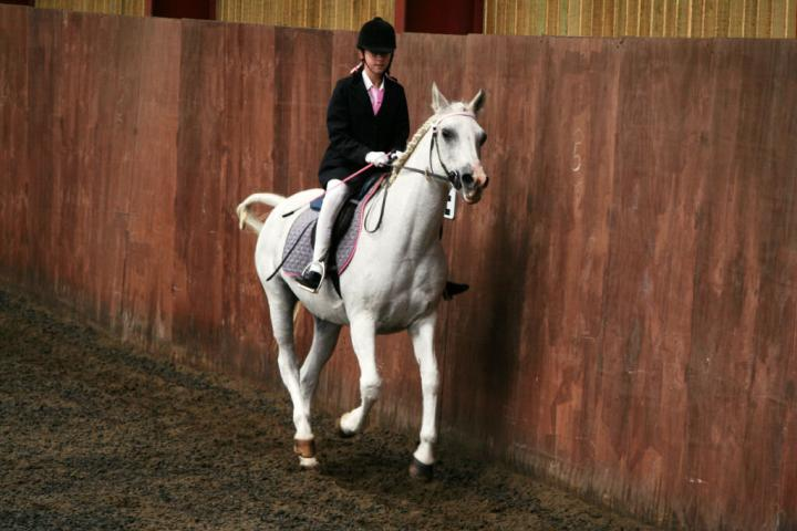 chestnuts-riding-school-sussex-brighton-dressage-2006-05-10-2008-85
