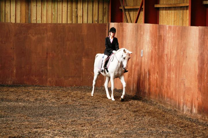chestnuts-riding-school-sussex-brighton-dressage-2006-05-10-2008-86