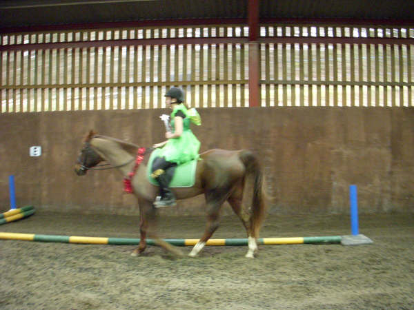 chestnuts-riding-school-sussex-brighton-xmas-show-2006-07