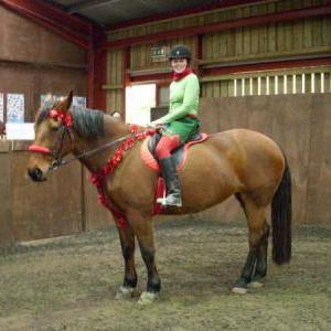 chestnuts-riding-school-sussex-brighton-xmas-show-2006-09