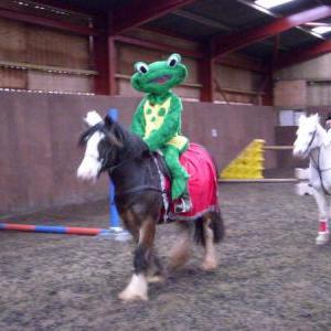 chestnuts-riding-school-sussex-brighton-xmas-show-2006-11