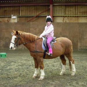chestnuts-riding-school-sussex-brighton-xmas-show-2006-17